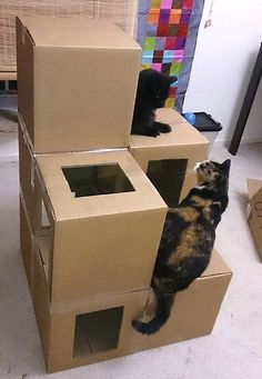 Dishfunctional Designs: Cool Cat Houses For Cool Cats - DIY Cat Houses #catsdiybed