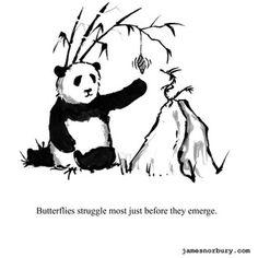 Big Panda, Little Panda, Bored Panda, Tiny Dragon, Little Dragon, Dragon Quotes, Motivational Cards, Inspirational Quotes, Dragon Comic