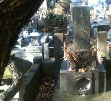 金田一京助のお墓。