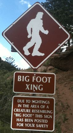 Colorado Bigfoot - hundreds of sasquatch sightings draw attention to elusive creature hiding in Colorado's remote mountains - Altered Dimensions Paranormal Woodland Creatures, Fantasy Creatures, Bigfoot Party, Bigfoot Photos, Pie Grande, Finding Bigfoot, Bigfoot Sightings, Usa People, Bigfoot Sasquatch