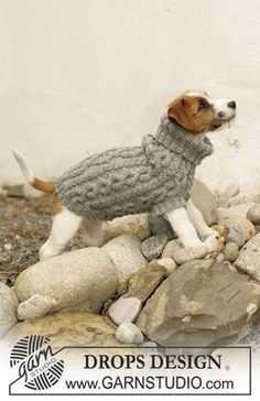 Pets & Toys - Free knitting patterns and crochet patterns by DROPS Design Knitted Dog Sweater Pattern, Dog Coat Pattern, Knit Dog Sweater, Sweater Knitting Patterns, Dog Sweaters, Free Knitting, Jumper Patterns, Knitted Coat, Lace Knitting