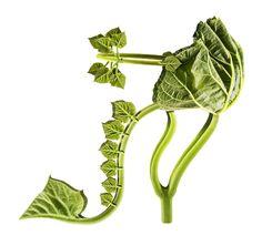 """Green Piece """"Shoe Fleur"""" - #design - #art"""