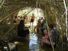 Jungle of Rhodes - Archangelos - Beoordelingen van Jungle of Rhodes - TripAdvisor Small Lake, Nature Photos, The Locals, Trip Advisor, The Good Place, Greece, Wildlife, Tours, Activities