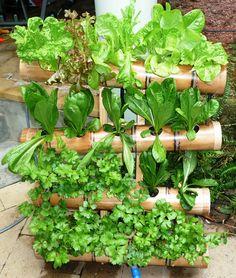Bamboo Vertical Garden