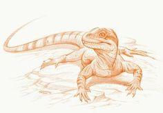 Homeosaurus by PaleoPastori