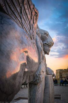 Venetian Lion, Larnaca, Cyprus