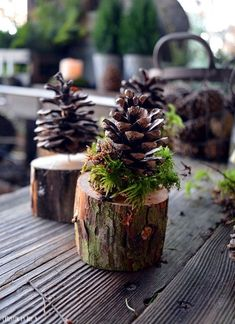 Christmas decoration with pine cones, Christmas decoration with cones, gnome gift, natural Christmas decoration, DIY … Natal Natural, Navidad Natural, Natural Christmas, Christmas Crafts, Xmas, Christmas Ornaments, Christmas Tree, Pine Cone Christmas Decorations, Table Decorations