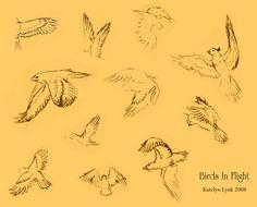 Birds In flight by pepperkatsrule.deviantart.com