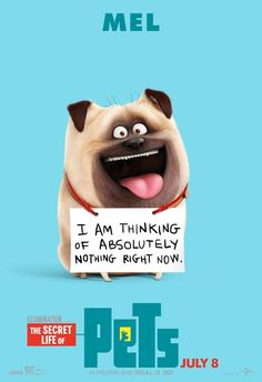 Universal Pictures and Illumination Entertainment has unveiled new character posters for 'The Secret Life of Pets' in celebration of National Pet Day. Funny Picture Quotes, Funny Pictures, Funny Quotes, Funny Memes, Hilarious, Funny Animals, Cute Animals, Pets Movie, National Pet Day