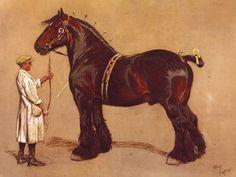 The Shire Horse Premium Giclee Print by Cecil Aldin at Art.com