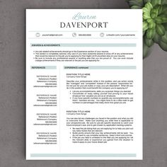 Free Resume Templates Word  Resume Template Ideas