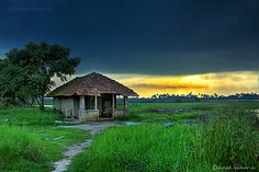 Kadamakudi by serena Village Photography, Landscape Photography, Nature Photography, Watercolor Landscape, Landscape Paintings, Kerala Travel, Village Photos, Indian Village, Indian Art Paintings