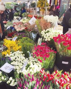 Columbia Road Flower Market is a Sunday favourite.