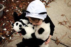 panda love