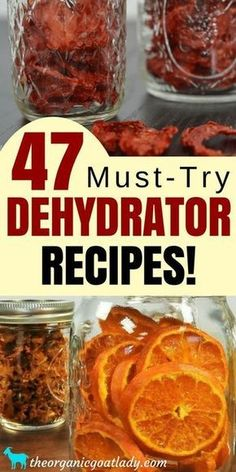Are you looking for the food dehydrator recipes? This is the ultimate list of dehydrated food recipes and resources! Whether you are a beginner or experienced at dehydrating, this list is for you! Seared Salmon Recipes, Dehydrated Vegetables, Dehydrated Food Recipes, Dehydrated Apples, Jerky Recipes, Healthy Snacks, Healthy Recipes, Healthy Detox, Food Wishes