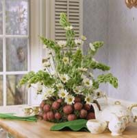 This is a really clever St Patrick's Day centerpiece if you like decorating when it doesn't SCREAM holiday decorating!!