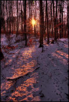 Follow the sun by JoInnovate on DeviantArt