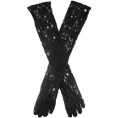 Dents Ladies long lace glove (30 CAD) ❤ liked on Polyvore featuring accessories, gloves, black, gloves/mittens, lace gloves, long lace gloves, dents gloves and long gloves