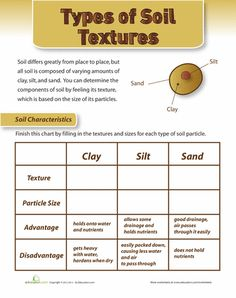 Worksheets: Soil Texture