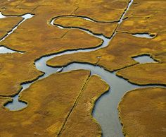 autumn marsh [great south bay, long island, ny] by alida Long Island Ny, Fire Island, Island Life, Airplane Window, Birds Eye View, Natural Forms, Aerial Photography, Night Photography, Aerial View
