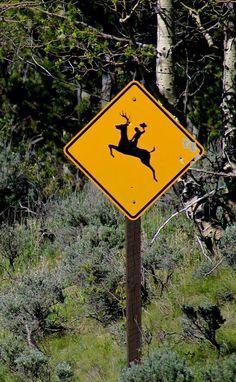 Wyoming..