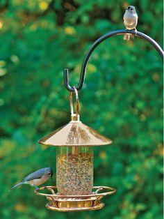 Perch Bird Feeder