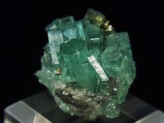 ベリル(緑柱石) > エメラルド