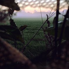 Hiding in the hide and calling for crows. Big time crow hunting day.  Morning shot behind the blind. Northern Hunting. @northernhunting_com #crowhunting #huntfromhide #loadedshotgun #sunrise #hunt #dkhunting #northernhunting #huntinggear #hunting