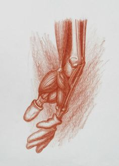 Anatomical Hand Study by Michael Hensley Male Figure Drawing, Form Drawing, Figure Drawing Reference, Anatomy Reference, Anatomy Study, Anatomy Drawing, Human Anatomy, Anatomy For Artists, Natural Forms