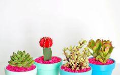 DIY-Gold-Dipped-Plant-Pots3