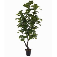 7' Real Touch Fiddle Leaf Fig Silk Tree w/Pot -Green ** You can get additional details at the image link.