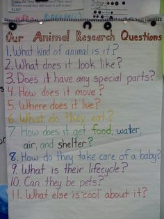 Research questions - many of these questions will work for our migration research projects!Animal Research questions - many of these questions will work for our migration research projects! 1st Grade Science, Kindergarten Science, Science Classroom, Teaching Science, Kindergarten Classroom, Literacy Activities, Educational Activities, Preschool, Research Writing