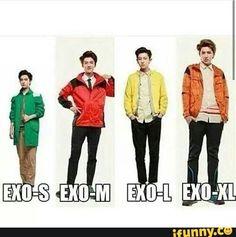XD   EXO-Small EXO-Medium EXO-Large EXO-Xtra Large  { #EXO #EXOL #Exotic #SMEntertainment #Kpop #KpopFunny #KpopMeme #iFunny } ©iFunny