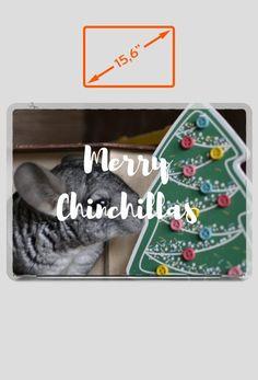 Christmas gift idea for chinchillas fans. Visit store to buy laptop/notebook cover with chinchillas. | Pomysł na prezent dla miłośnika szynszyli. Odwiedź nasz sklep i kup naklejkę na laptopa/notebooka z szynszylą już teraz. (www.uszynszyla.cupsell.pl) #christmas #szynszyla #prezenty #uszynszyla #mrstefano #tshirt #pets #rodent #gift #ideas #inspiration #bożenarodzenie #chinchillas #szynszyle #laptop #notebook #cover #naklejka
