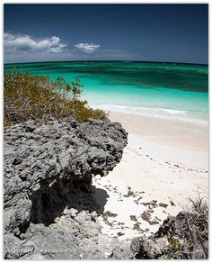 Planning a trip to Eleuthera? Eleuthera-Map offers the information and resources you need to experience the best of what the Island has to offer. Eleuthera Bahamas, Bahamas Island, Destination Voyage, Serenity, Travel Guide, Beaches, Travel Destinations, Freedom, Water