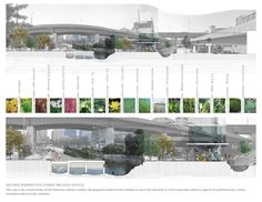 bioswale cross section - Google Search