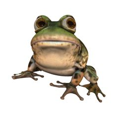 frog (29).png ❤ liked on Polyvore featuring frogs