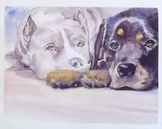 """""""Waiting for Rescue - Rottweiler and Pit Bull"""" - watercolor painting by Tracy Downing McDermott"""