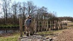 Afbeeldingsresultaat voor boomstammenpad