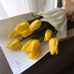 Yellow tulips love so pretty flowers Plant Aesthetic, Aesthetic Colors, Flower Aesthetic, Aesthetic Yellow, Aesthetic Light, Aesthetic Grunge, My Flower, Flower Power, Cactus Flower