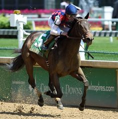 Carina Mia, the 3-5 favorite, ran to her backing while drawing clear in the seven-furlong Eight Belles Stakes (gr. II) for 3-year-old fillies May 6 at Churchill Downs.