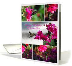 Happy Birthday, Grandmother, Green-throated Carib  Hummingbird card  http://www.greetingcarduniverse.com/grandma-grandmother-birthday-cards/general/happy-birthday-grandmother-green-throated-carib-896609?gcu=42967840600