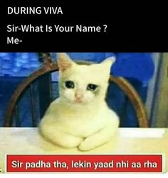 Funny Fun Facts, Very Funny Memes, Latest Funny Jokes, Funny Jokes In Hindi, Funny School Memes, Some Funny Jokes, Funny Relatable Memes, Funny Sarcasm, True Memes