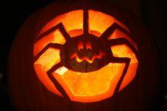 A creepy crawly Jack-o-Lantern to join our real creepy crawlies! Pumkin Carving Easy, Amazing Pumpkin Carving, Pumpkin Carving Templates, Pumpkin Stencil, Scary Pumpkin, Pumpkin Art, Cute Pumpkin, Spider Pumpkin, Pumpkin Carvings