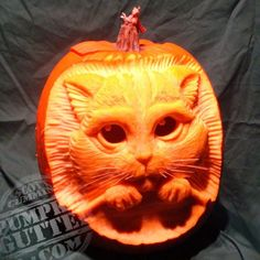 Pumpkin carving is a necessity during Halloween season. And these days, pumpkin carvings have been getting a bit elaborate. Here are some of the best Halloween pumpkin carvings on the planet. 3d Pumpkin Carving, Awesome Pumpkin Carvings, Pumpkin Art, Cat Pumpkin, Pumpkin Ideas, Pumpkin Designs, Pumpkin Facial, Pumpkin People, Pumpkin Contest