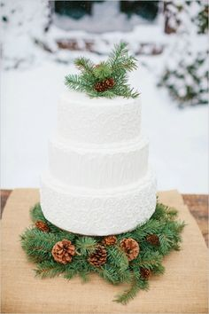 Wintry wedding cake | Nicole Cassano Photography
