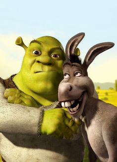 Shrek & Donkey. That's exactly us Bruce and Sam