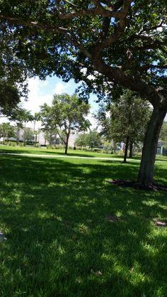 lynn campus