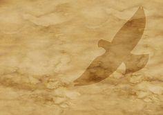Papel, Pergaminho, Dove, Voo, Voar, Manchas, Idade