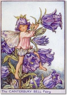 Cicely Mary Barker - Flower Fairies of the Garden - The Canterbury Bell Fairy